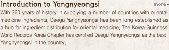 Introduction to Yaknyeongsi